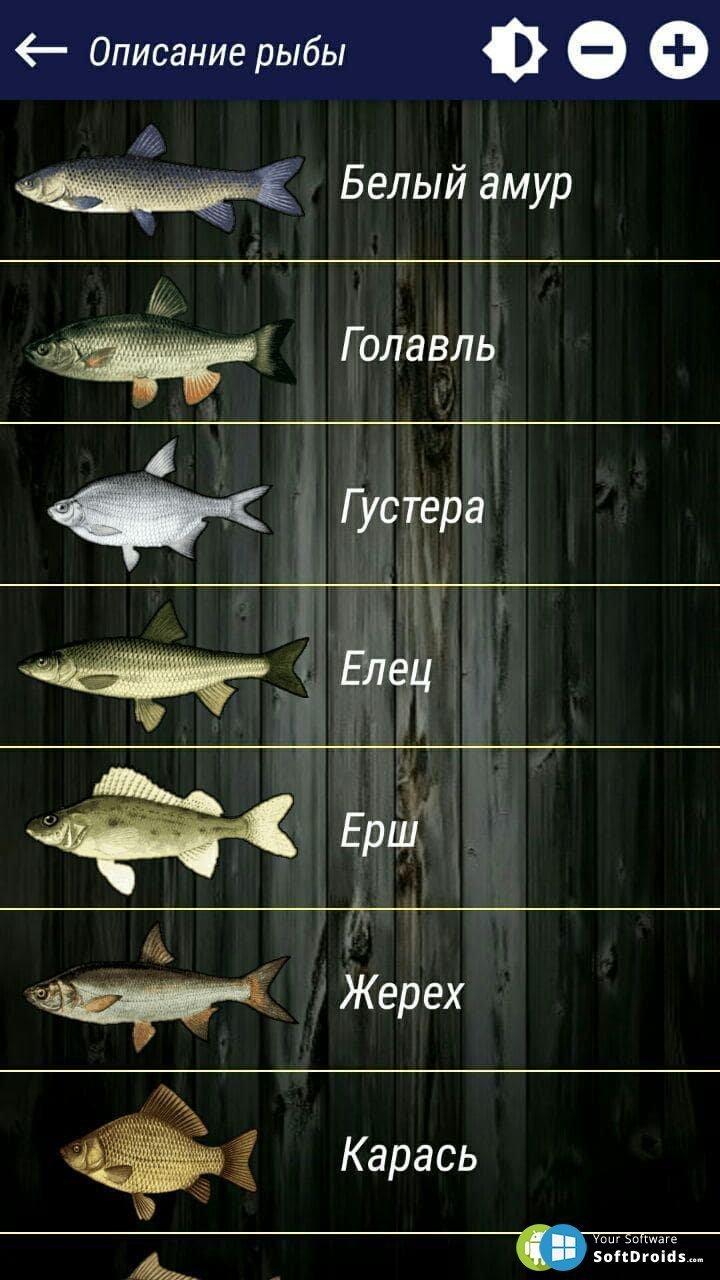 прогноз клева рыбы на андроид